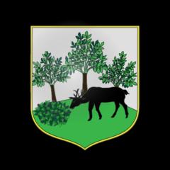 Village d'ARFONS